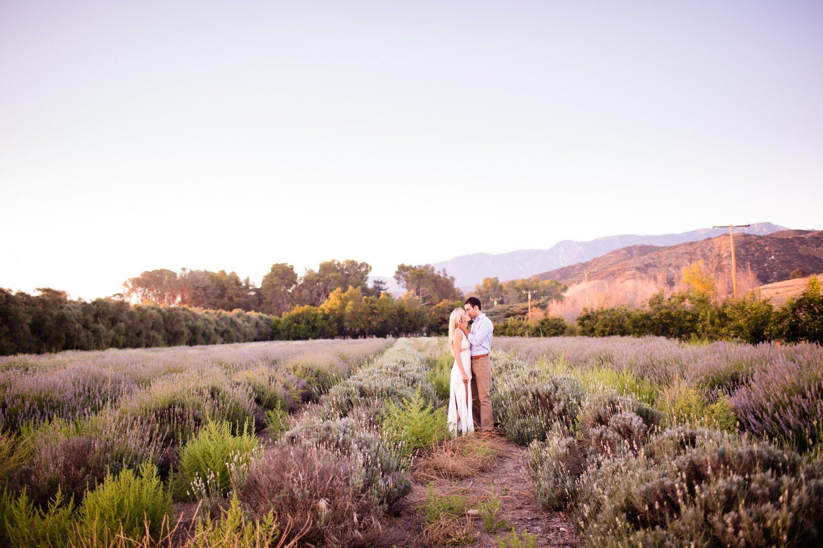 Highland_Springs_Lavender_Field_Engagement_41.jpg