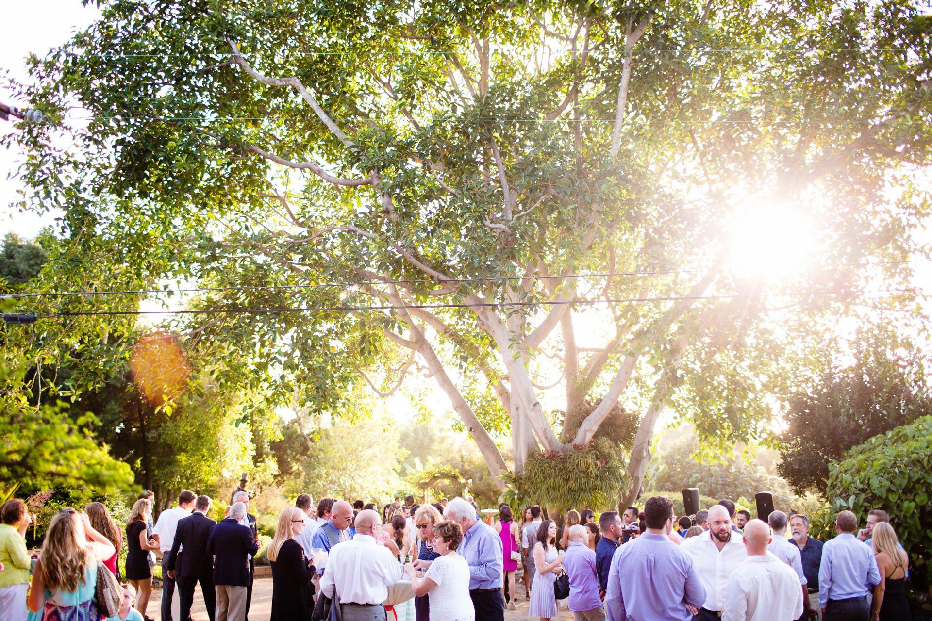 San-_Diego_Botanic_Garden_Wedding_077.jpg