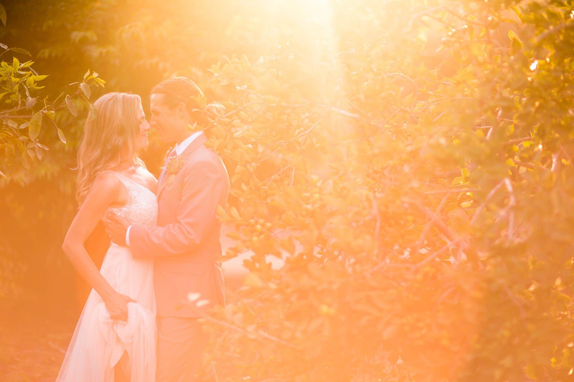 San-_Diego_Botanic_Garden_Wedding_001.jpg
