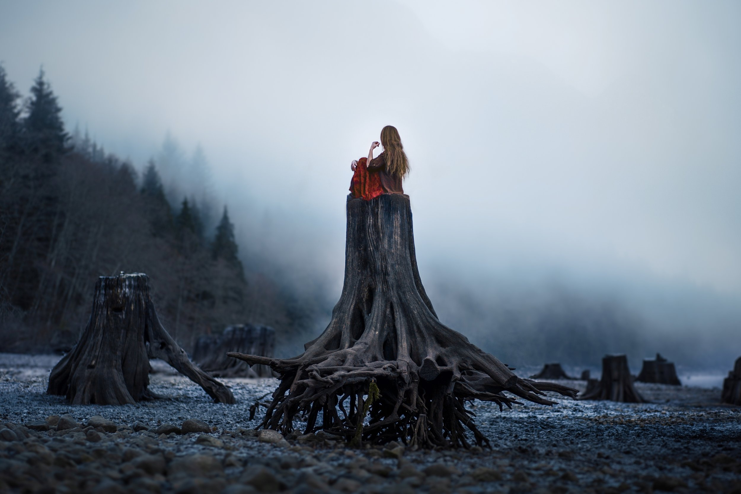 Elizabeth Gadd - First picking up a camera in 2005 at the age of 12, she began creating photographs involving nature and landscapes, eventually leading to the whimsical combination of landscapes with human portraiture (usually self-portraits) that she's known for today. This niche of Lizzy's photography has been described by others as fairytale-esque, dreamy …Visit Elizabeth's Website