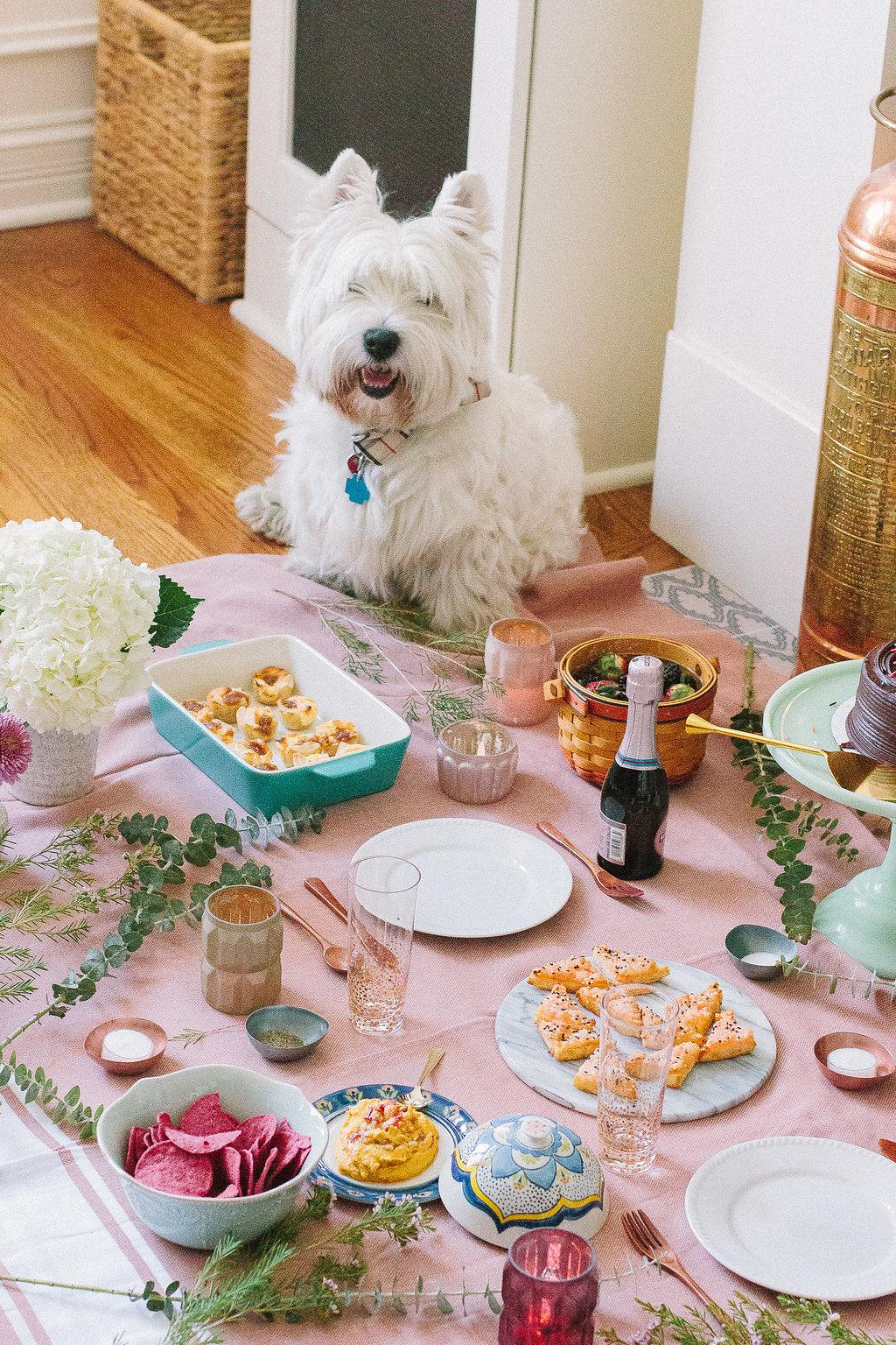 indoor picnic ideas for fun date night
