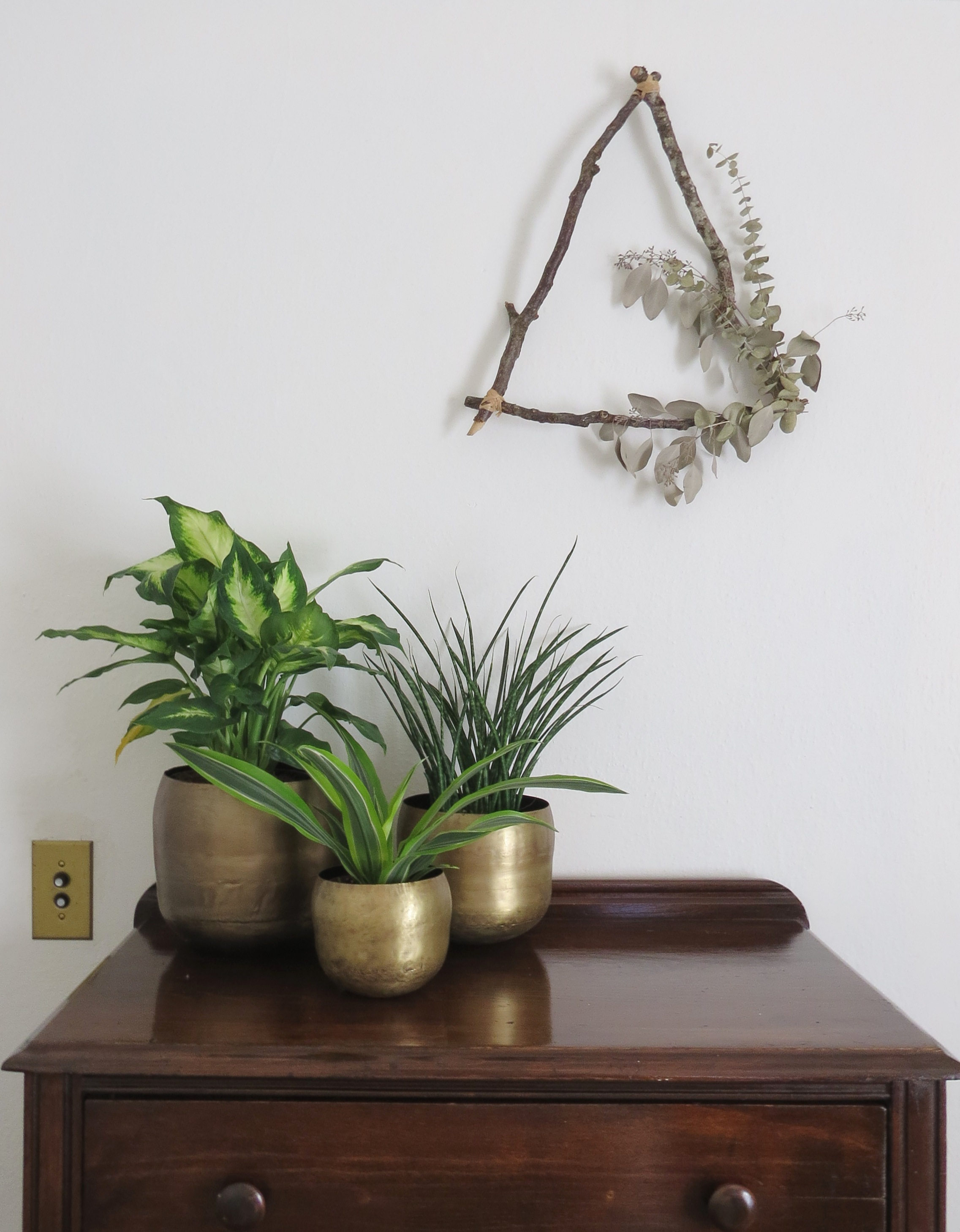 brass planters for indoor plants foraged  home