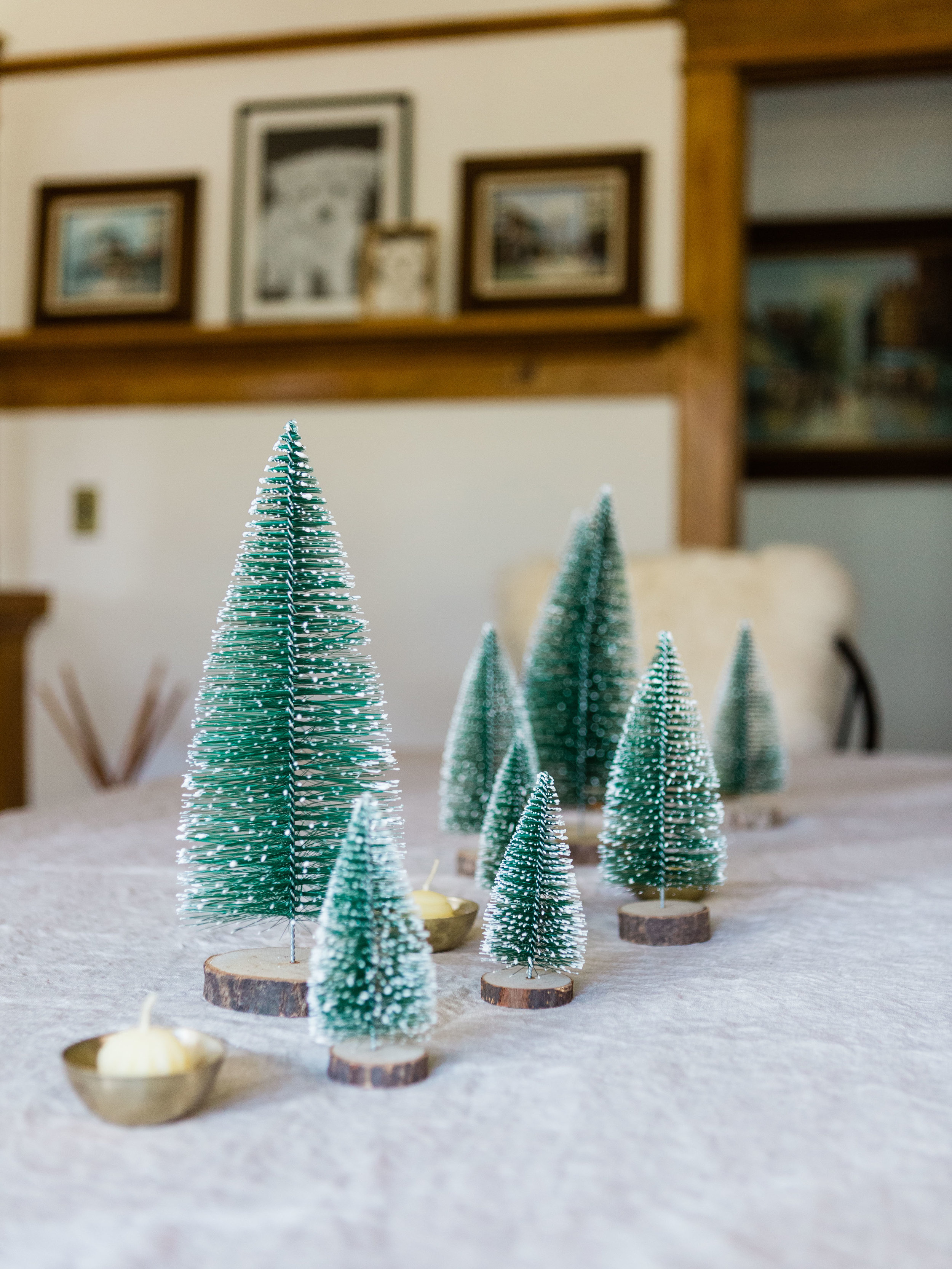 bottle brush trees from foragedhome.com