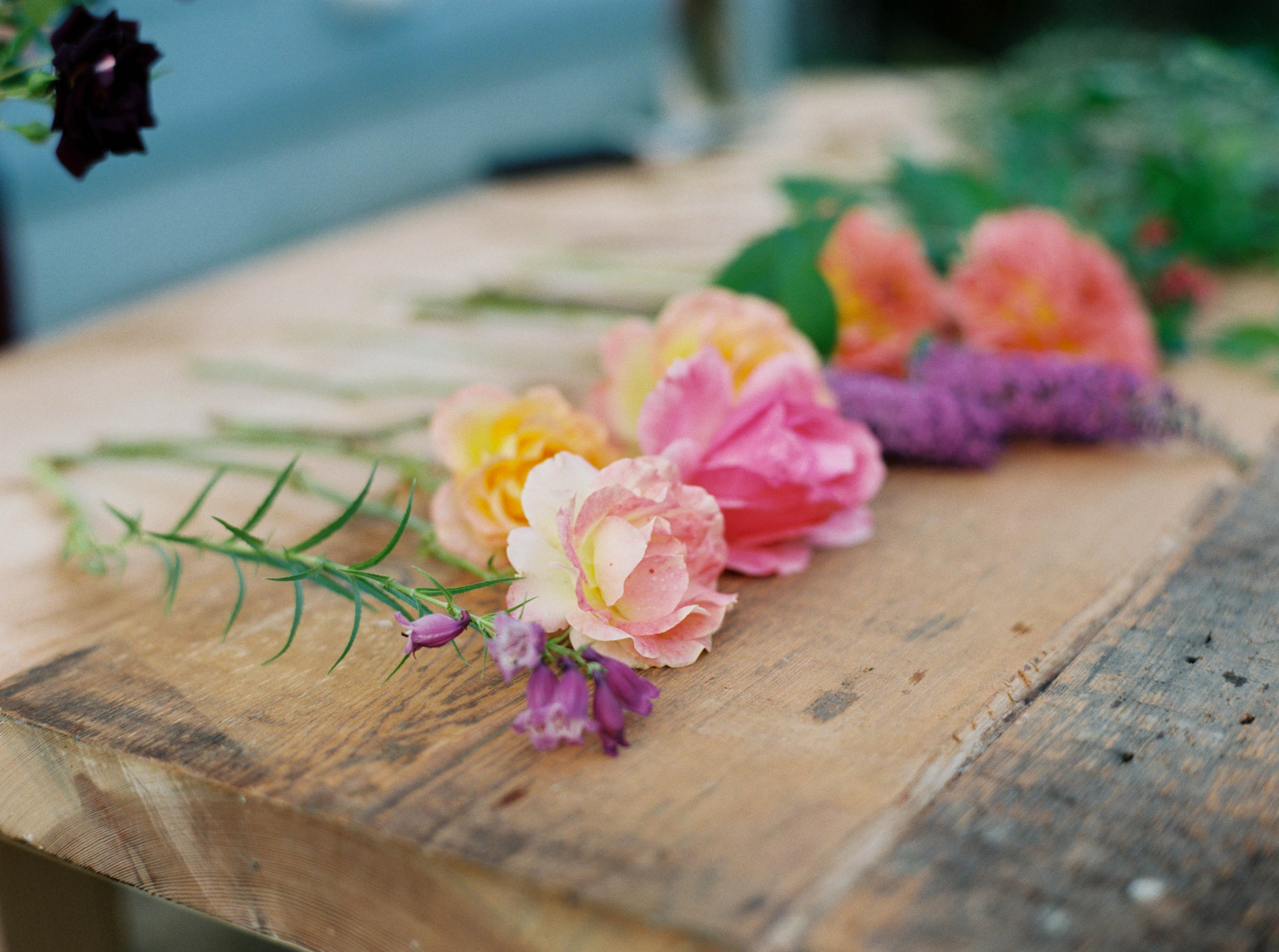 flowers to make a foraged flower bouquet for wedding