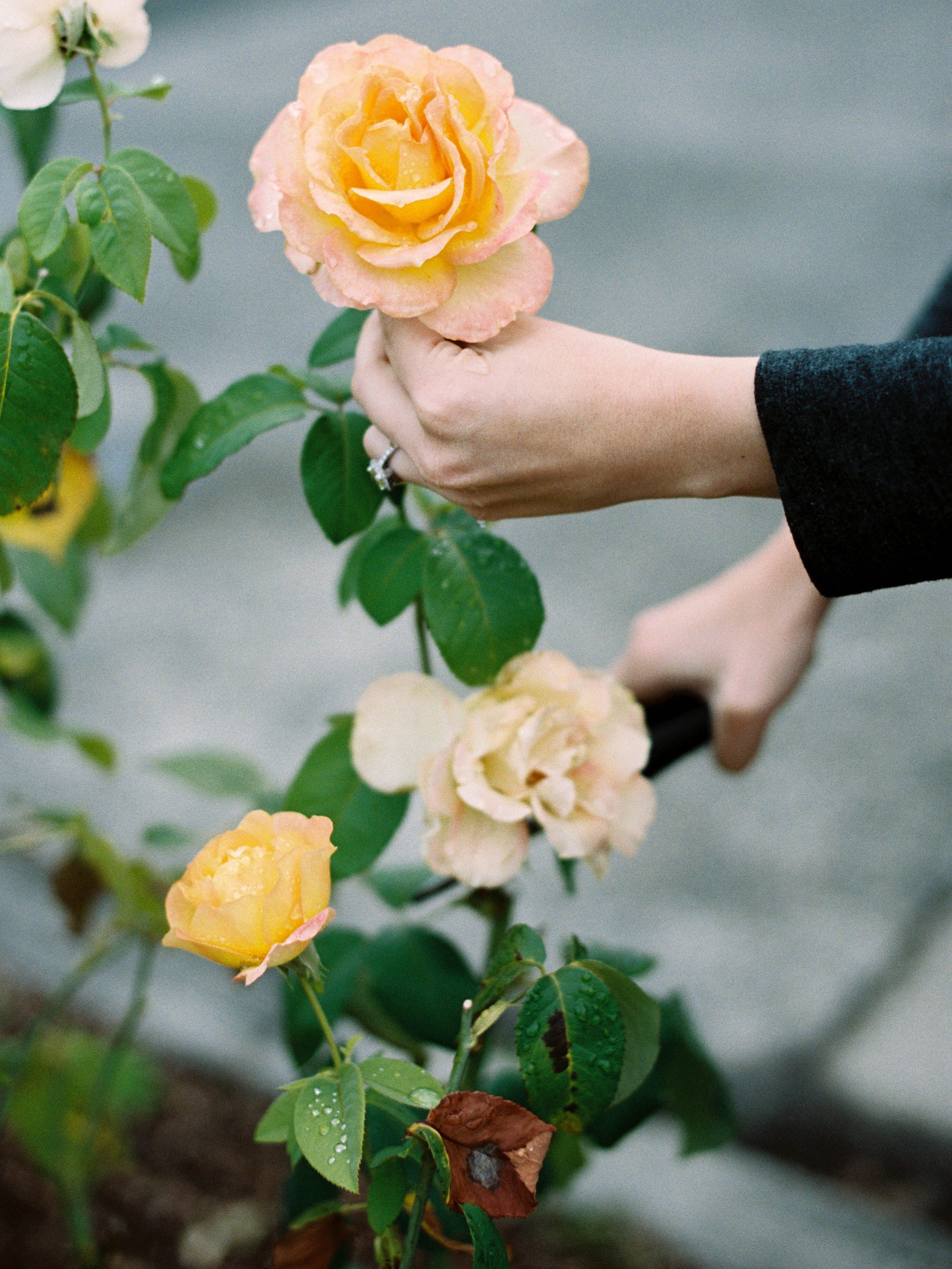 how to forage flowers for wedding
