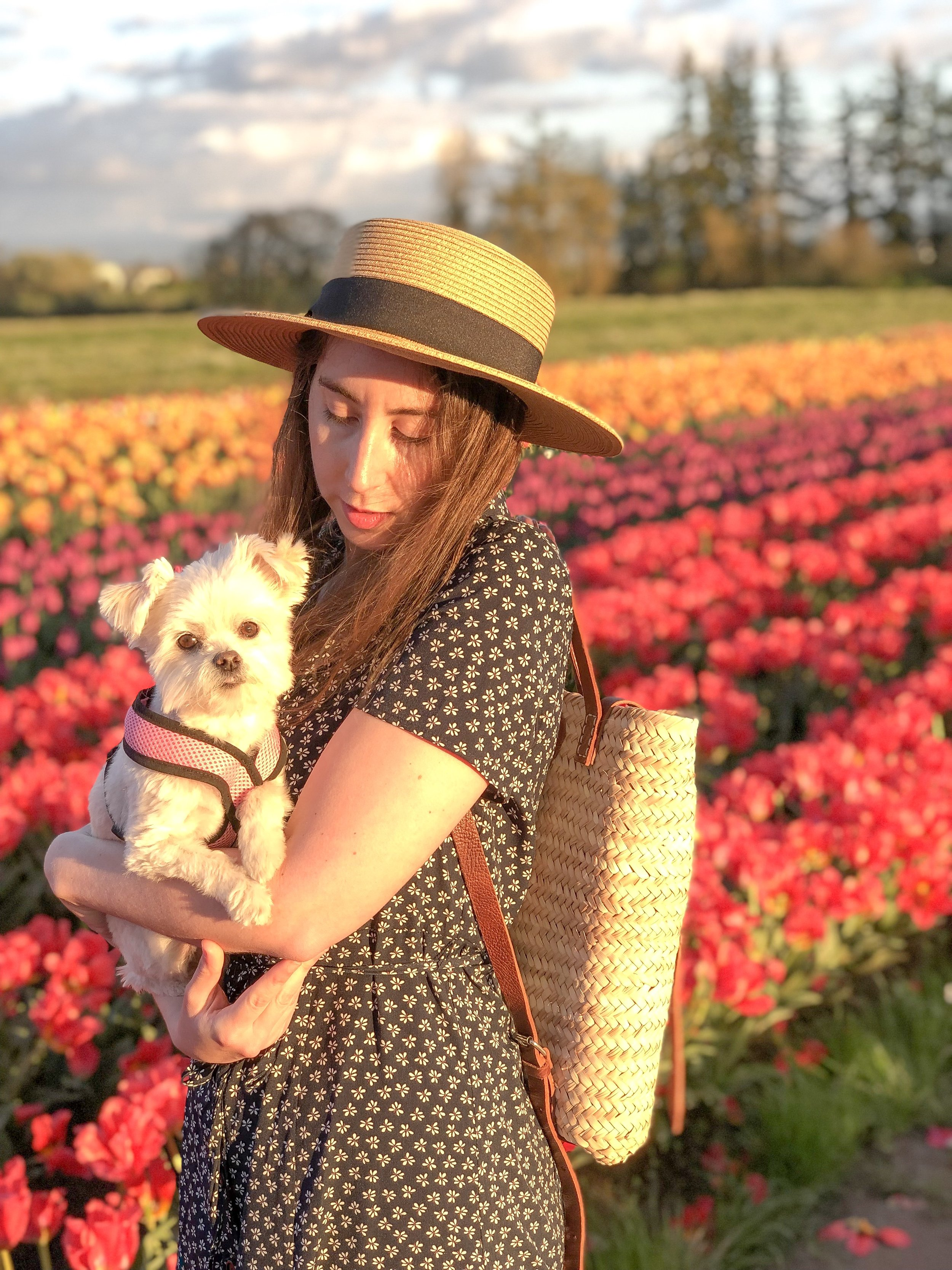 wooden shoe tulip farm, spring and summer dress and outfit for curvy girls at livingforaged.com