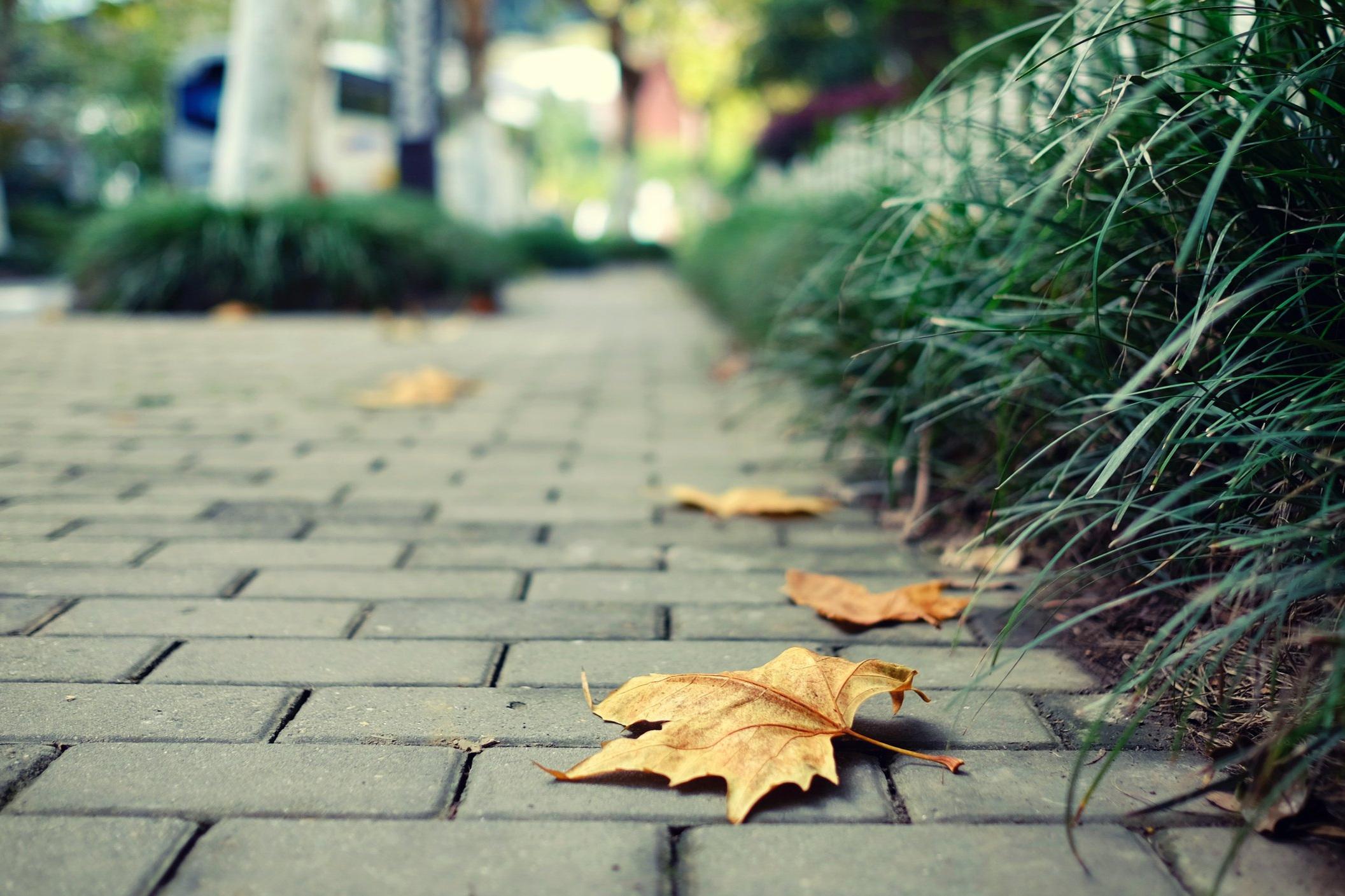 - downtown master greenway plan
