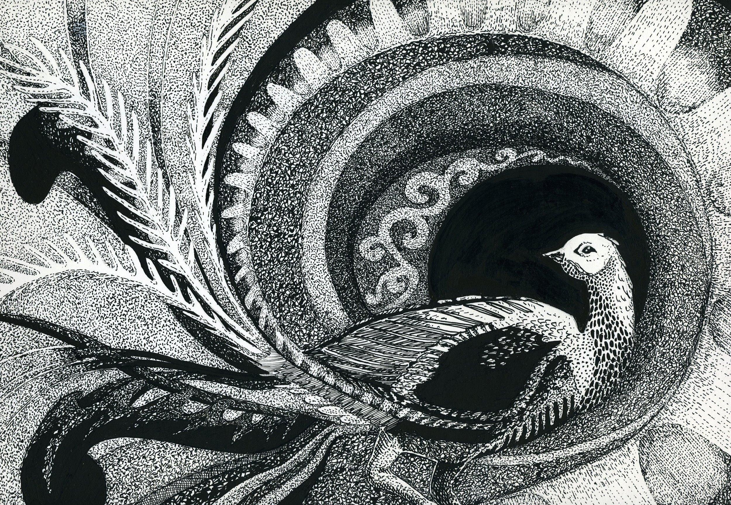 penink-superblyrebird.jpg