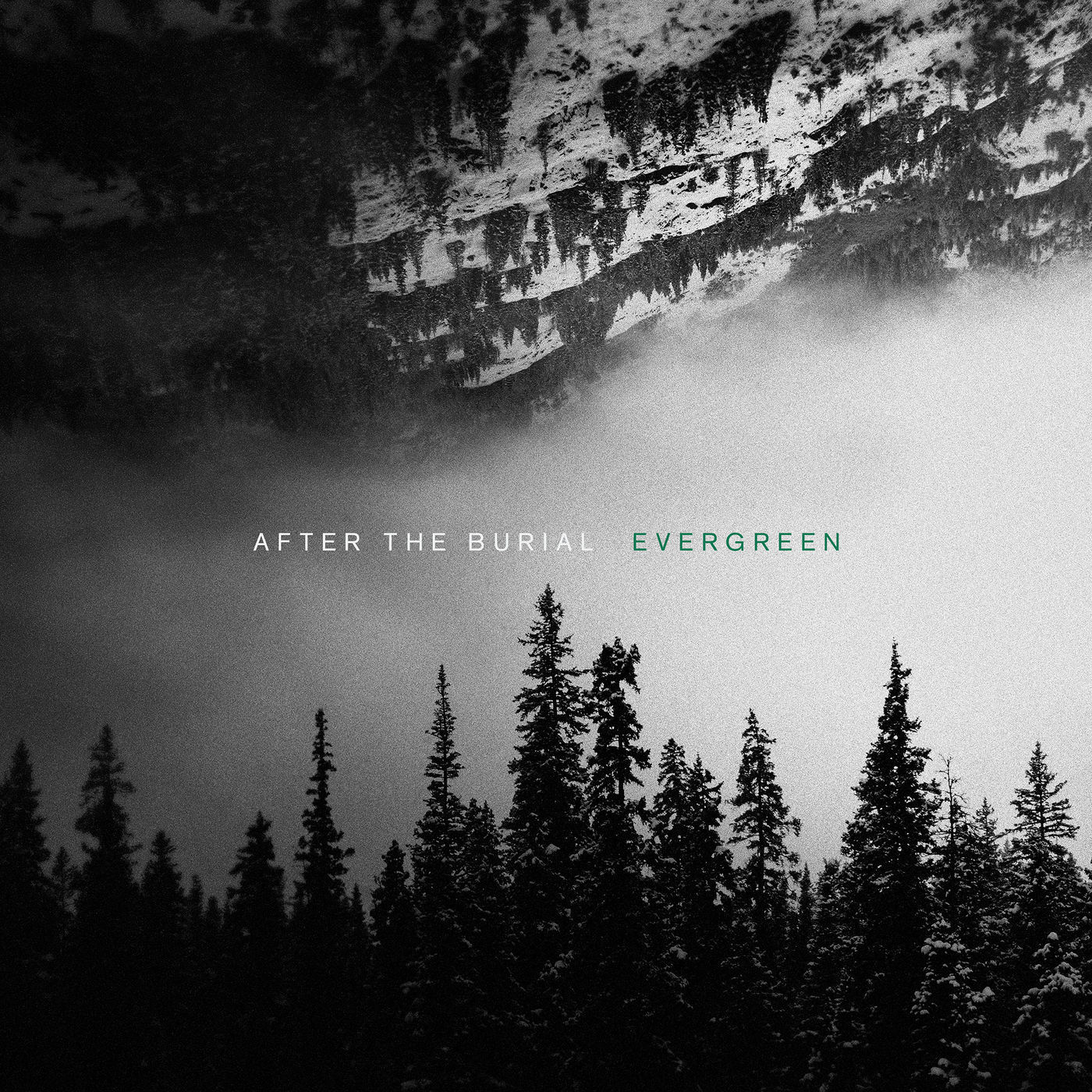 after the burial evergreen.jpg