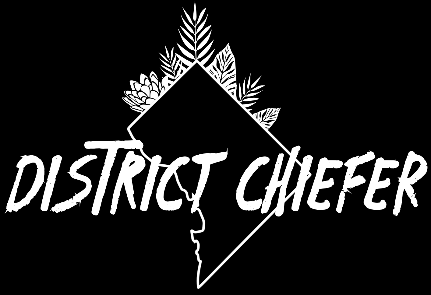 District Chiefer