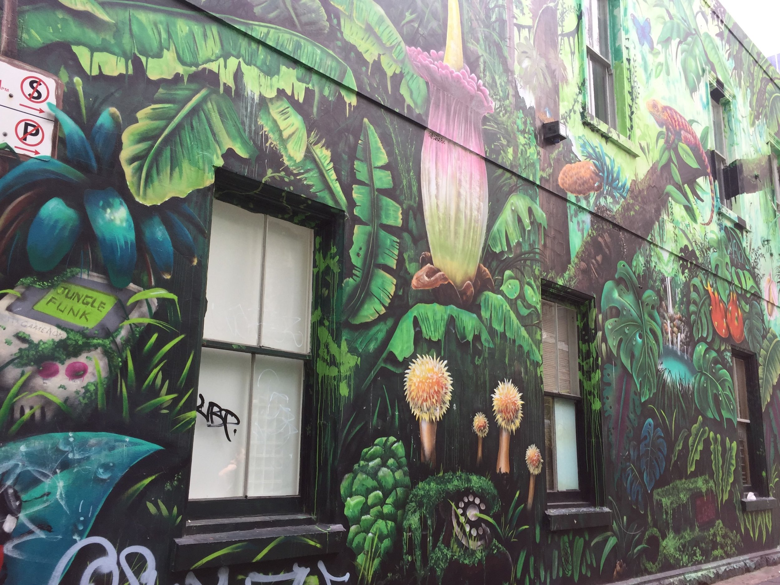 Melbourne Walking Tour-Melbourne Shopping Tour-Melbourne Shopping Experiences-Show Me Melbourne-Melbourne Street Art