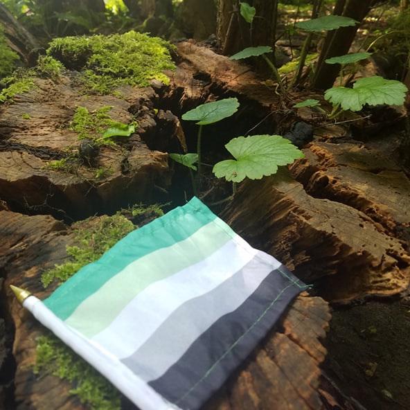 An small aromantic pride flag lying on wood and moss