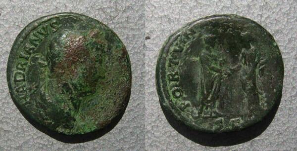 RC2915_Hadrian.JPG
