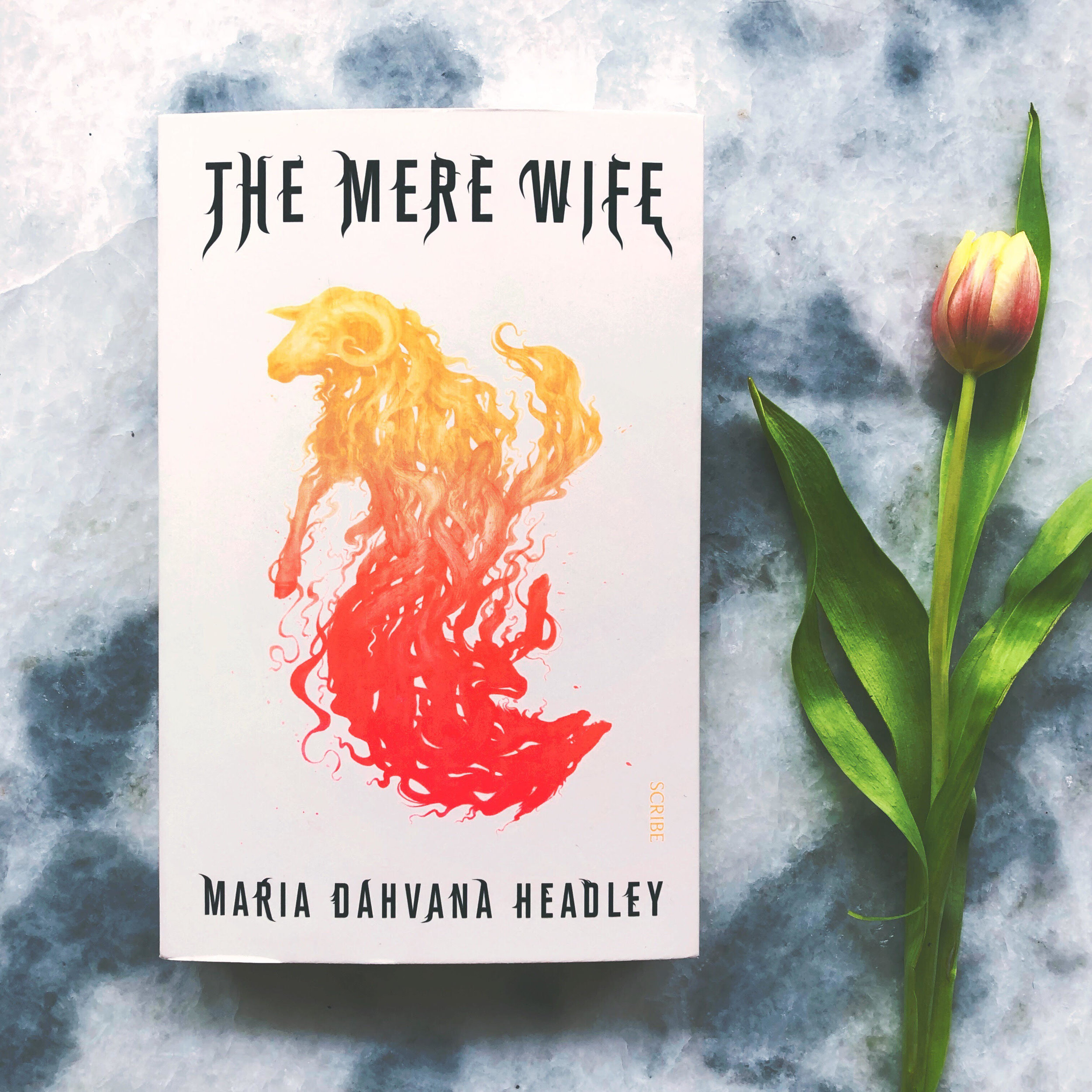 The Mere Wife - by Maria Dahvana Headley