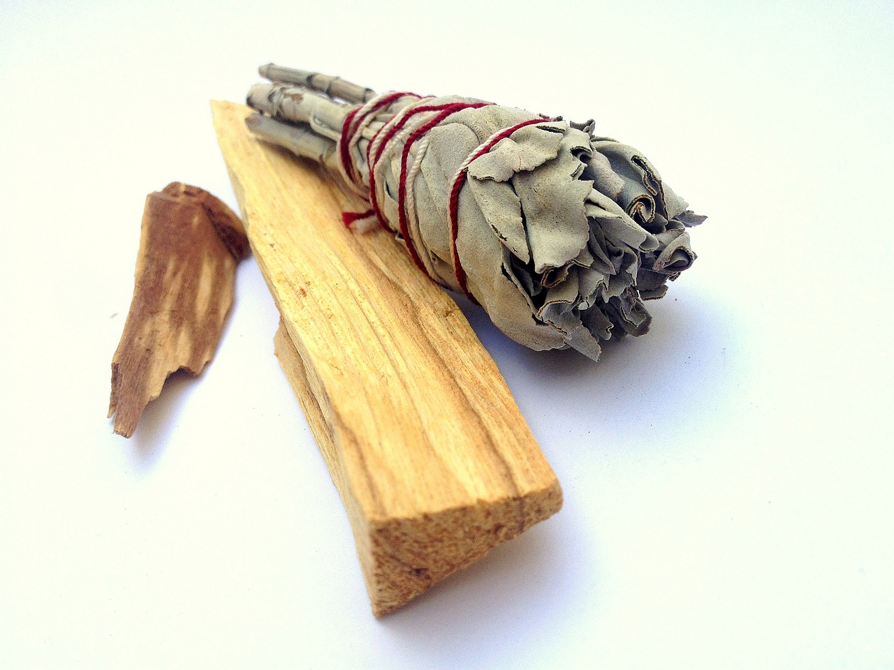 Palo Santo and White Sage (Image: Pixabay)