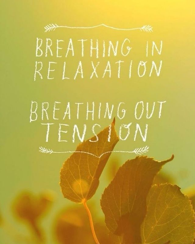 "#BirthAffirmations Thursday . ""Breathing in relaxation. 🍂 Breathing out tension."" . . . Most laboring women prefer to have something to focus on. Bringing awareness back to the breath allows for them to relax at a deeper muscular, mental, and spiritual level. Using the breath as a guide to bring them through the contraction or tightening sensation creates a sense of participation and control. Some women find that bringing back control and participation during the first stage of labor allows them to release unnecessary tension and fear. . . . Practicing breath work prenatally is important. This can be added to the day in small segments or can be part of a larger exercise. Yoga and meditation are great ways to practice breath work. They also do wonders for relieving daily stresses.  #sevencitiesmidwiferycare #sevencitiesmidwifery #homebirth #midwives #CPMs #certifiedprofessionalmidwife #naturalbirth #birth #makingafamily #sacredspace #homebirthinVA #midwiferymodelofcare #birthaffirmations #mindovermatter #positivemind #birthworks #breathwork #breatheinrelaxation #breatheouttension #meditation #yoga #letyourbreathbeyourguide"