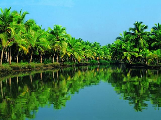 Cruise the pleasantly picturesque & palm-lined backwaters of Kerala State and experience 'Venice of the East' 🏝 . If you are looking for an unforgettable Indian holiday 🇮🇳🗺😃 TIKKA TOURS offer a unique and diverse range of special interest travel experiences such as the heavenly 10-Day /9-Night 𝗞𝗘𝗥𝗔𝗟𝗔 𝗪𝗘𝗟𝗟𝗡𝗘𝗦𝗦 𝗥𝗘𝗧𝗘𝗔𝗧 🇮🇳🕉🌺🧘‍♀️🇮🇳 . Departing: 𝟮𝟭 - 𝟯𝟬 𝗠𝗔𝗥𝗖𝗛 𝟮𝟬𝟮𝟬 . Curious to know more? Just click on the link in the bio for more information and book your next Indian adventure with TIKKA TOURS #travelwithtikka #tikkatours #meaningfultravel #india #incredibleindia #indiaspecialist #travel #travelphoto #travelphotography #instatravel #igtravel #instamood #instagood #picoftheday #seeindia #travelrealindia #travelgram #experienceindia #indiagram #visitindia #experiencetravel #uniqueindia #somewheredifferent #somewherenew #kerala #backwaters #alleppey