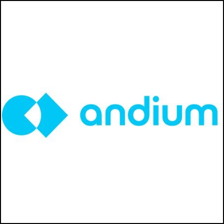 Andium Logo.png