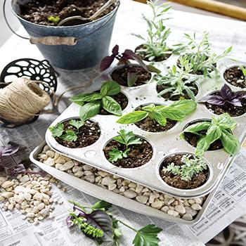 planter-3.jpg
