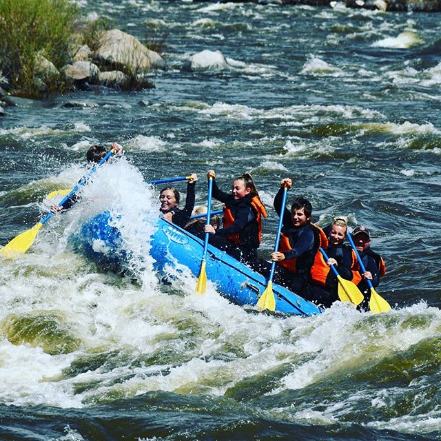 Come get a taste of the Yellowstone River this summer with the Flying Pig Rafting Company.  #whitewaterrafting #yellowstonenationalpark #yellowstone #ynp #rafting #outdoors #findyourpark