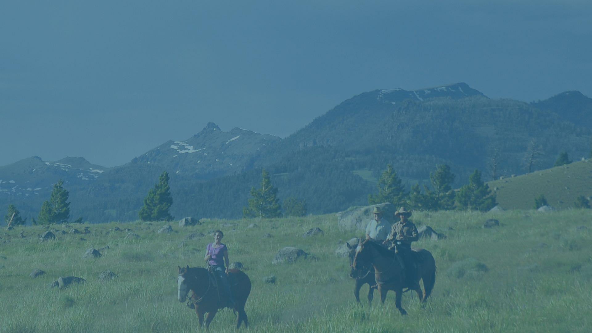 3-Day Yellowstone Adventure -