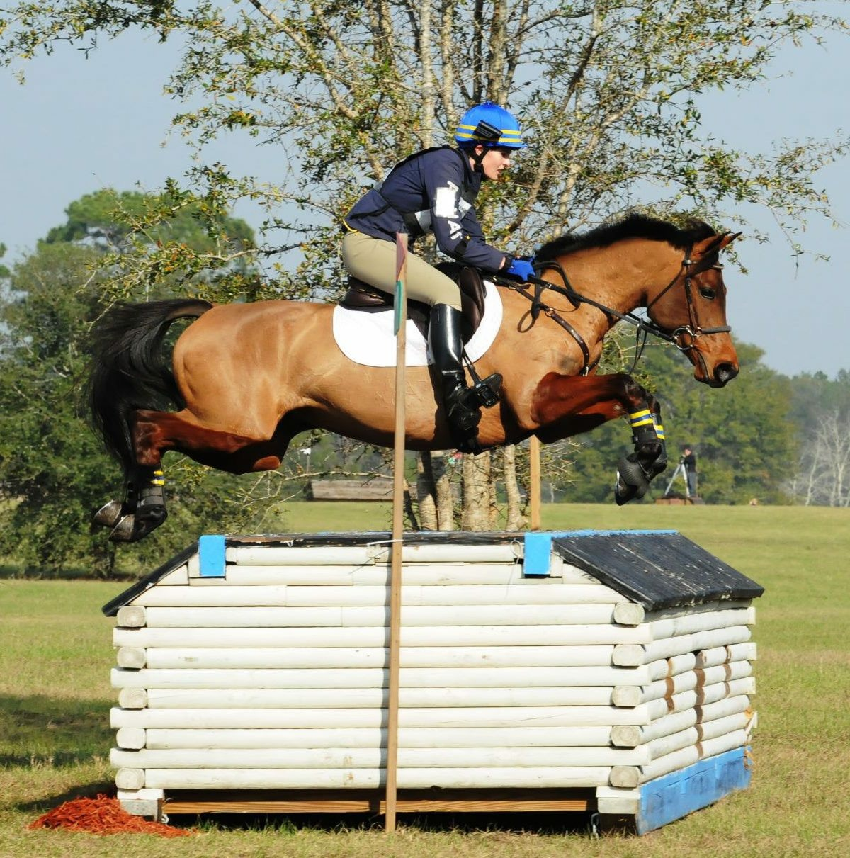USEF Pony eventer of the Year, GANYMEDE