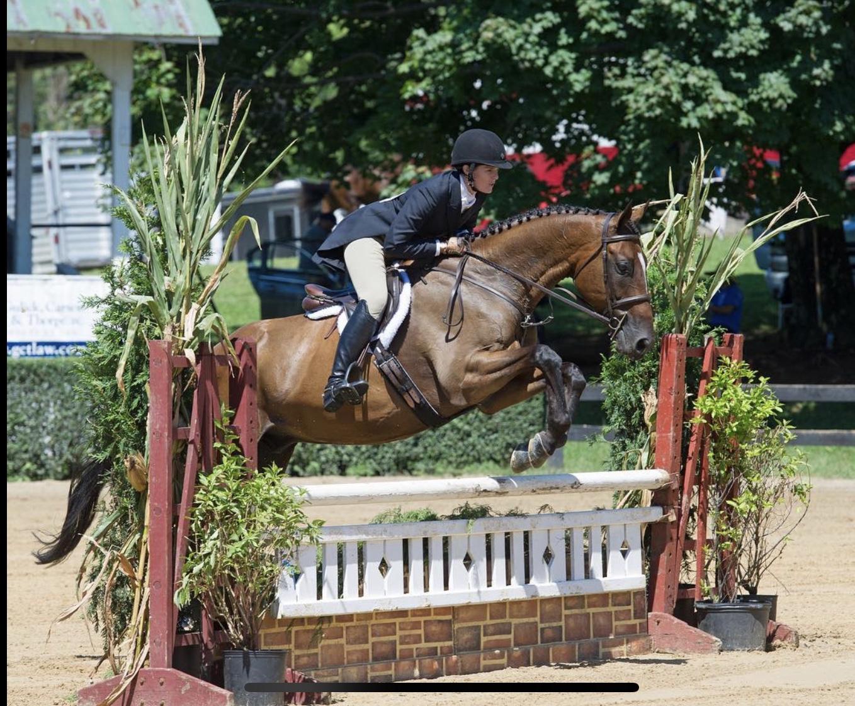 Foxhunters over Fences, 2018 Warrenton Horse Show