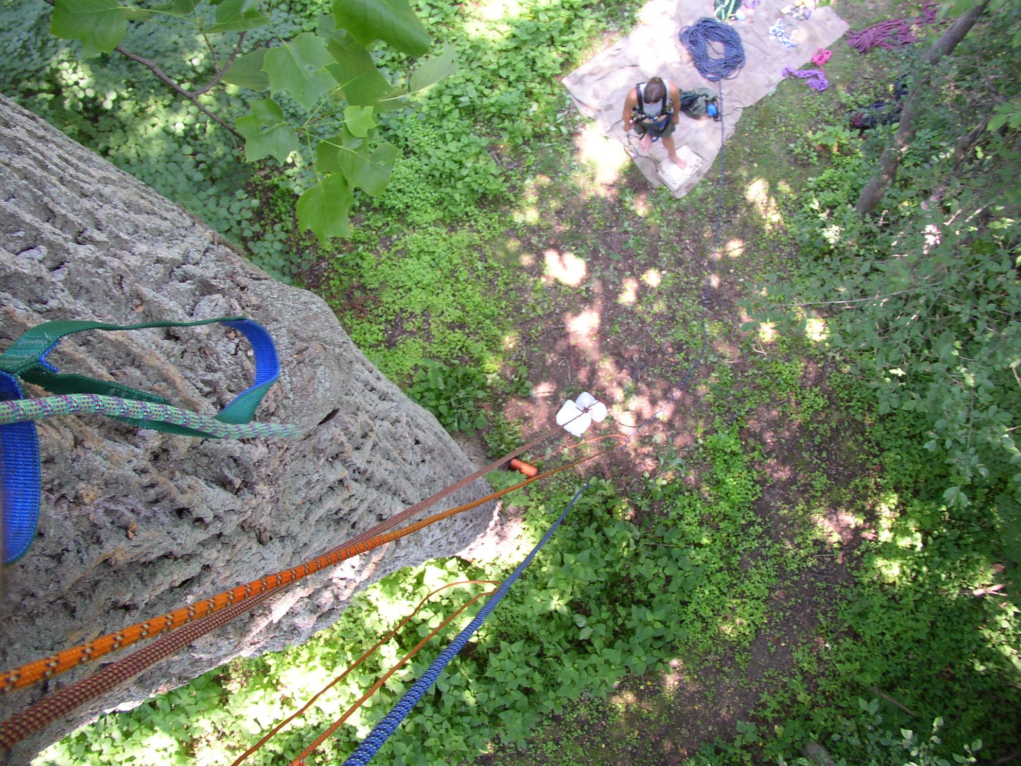 Looking down to Laura.JPG