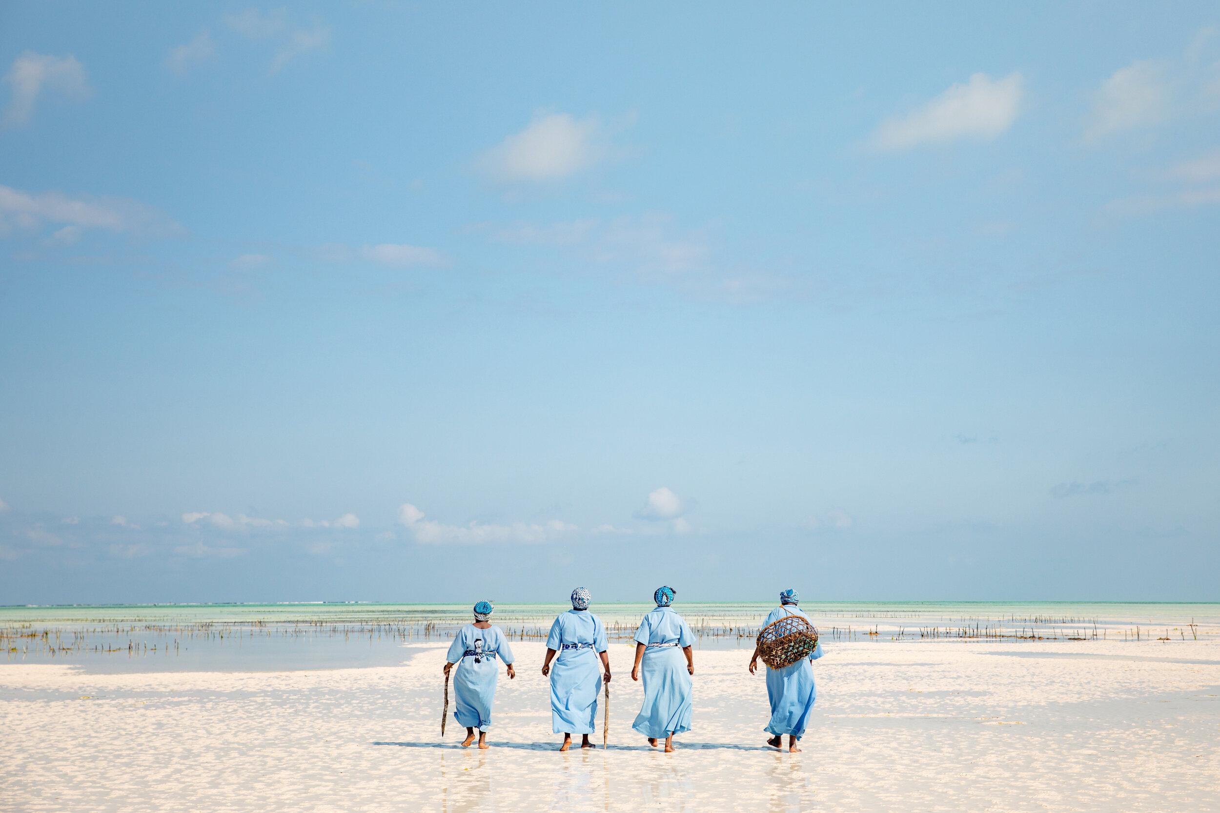 APitts_Condor_Zanzibar_097-2.jpg