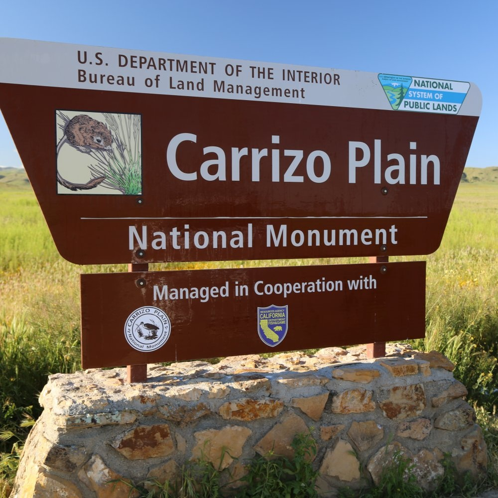 Copy of Carrizo Plains National Monument