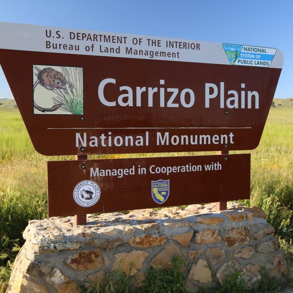 Copy of Carrizo Plains National Monument