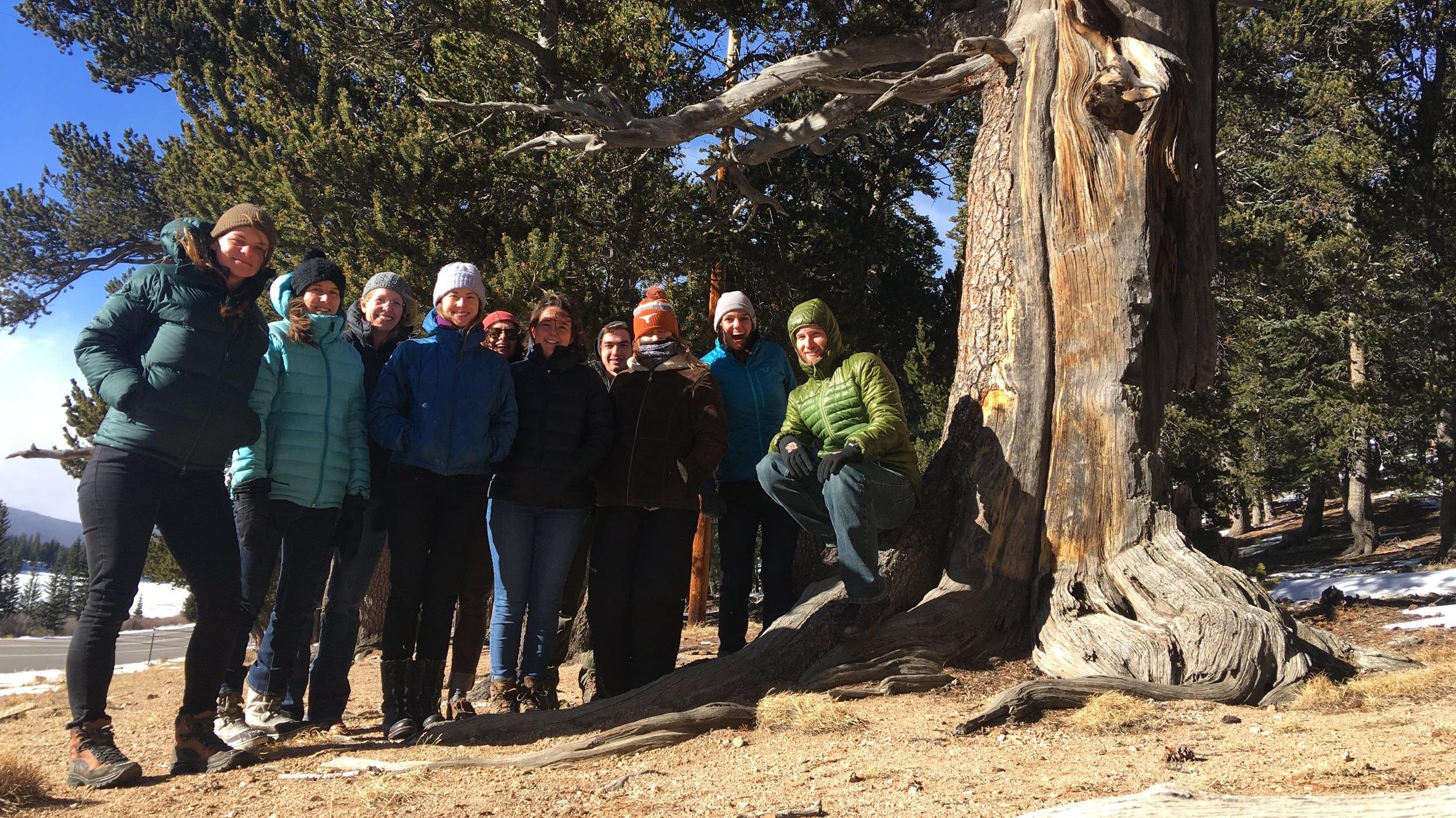 Lab Retreat, Mount Evans 2018: Isabel Schroeter, Ashley Whipple, Katie Suding, Laurel Brigham, Claire Karban, Katie Ebinger, Tom Merchant, Nancy Shackelford, Julie Larson, Cliff Bueno de Mesquita.