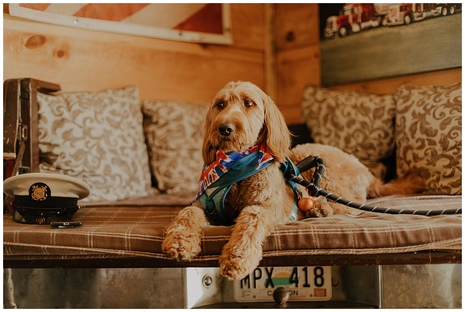 Sailor became a favorite of mine quickly! He is so cute and obeys so well! Plus, don't you just love this bench seat in the grooms getting ready room!