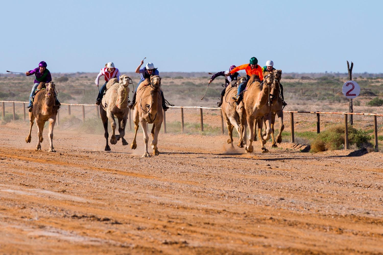 Image credit: David Godfrey, South Australian Tourism Commission