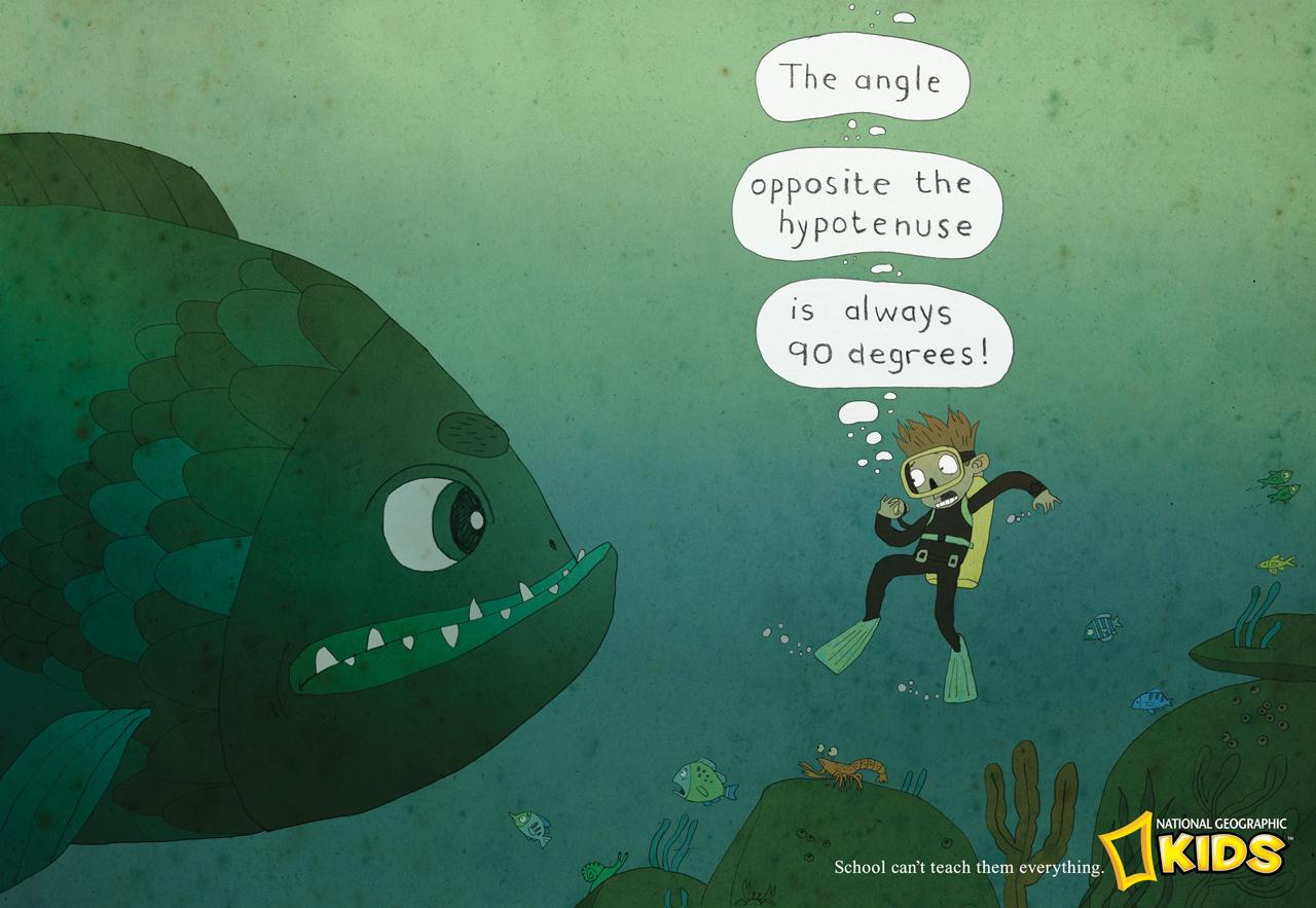 NGKFish.jpg