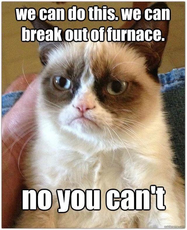 Rest in peace, Grumpy Cat. Thanks for all the memes. ☹️ #authorlife #writersofinstagram #authorsofinstagram #alexandergordonsmith #escapefromfurnace #realgrumpycat