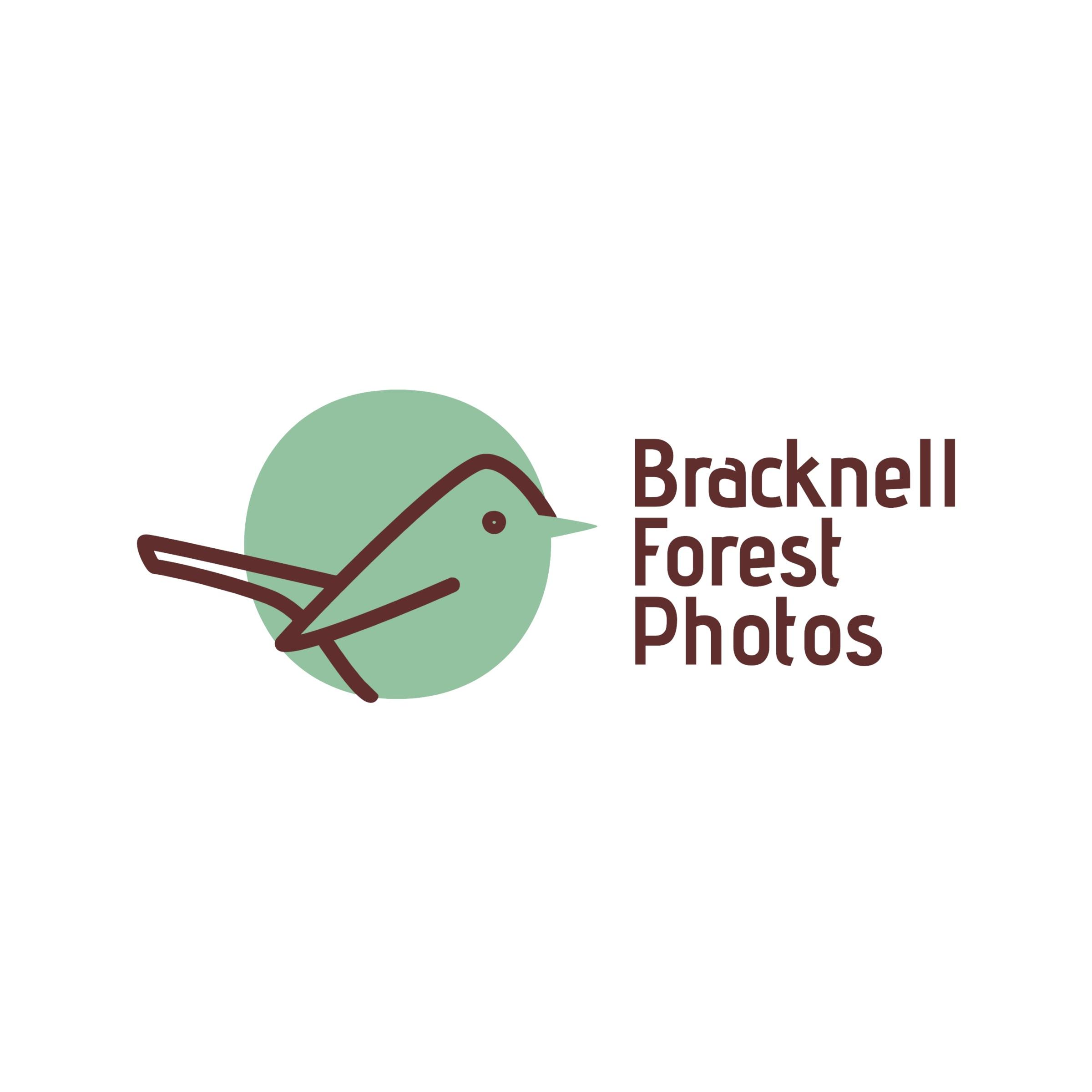 Bracknell Forest Photos