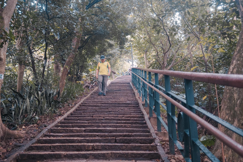 Steps! Hundreds of steps!