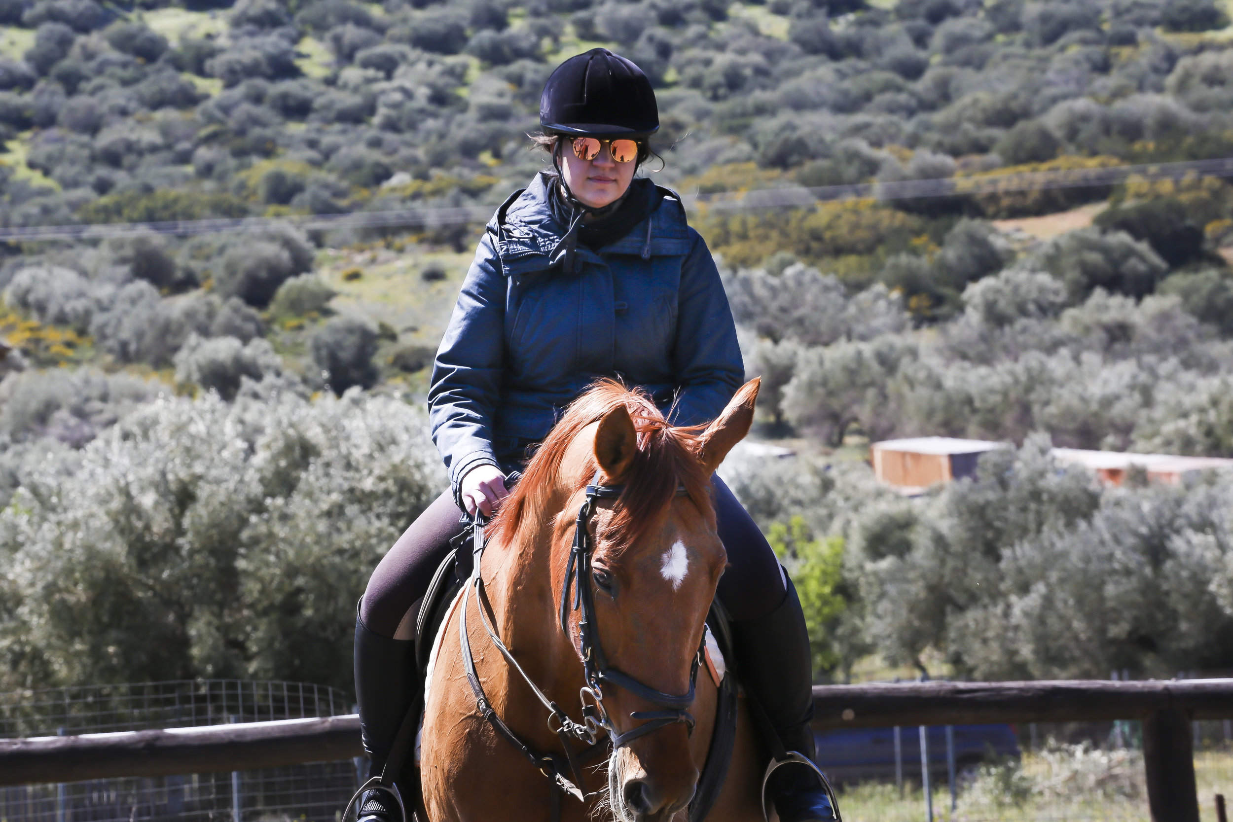Learn how to ride a horse with our trainers at the Ranch…
