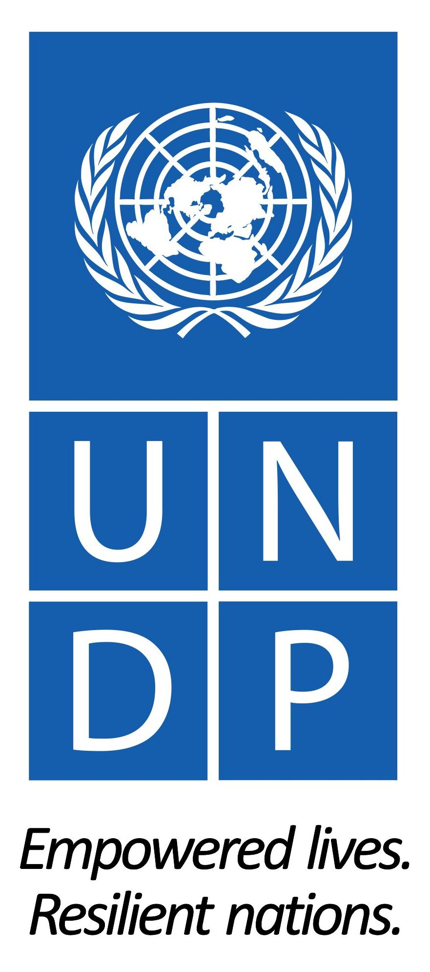 UNDP logo png.png