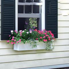 Flower Box (unit)