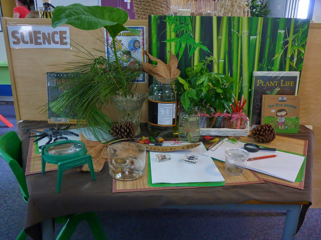 living things investigation area.jpg