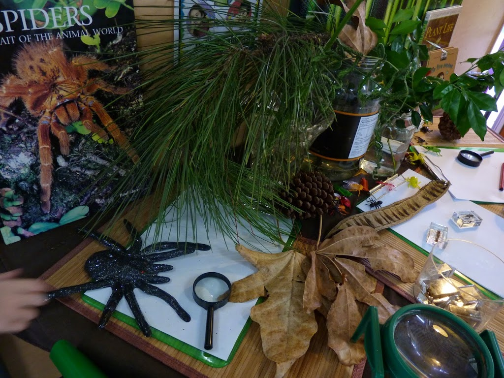 living things provocation for learning.jpg