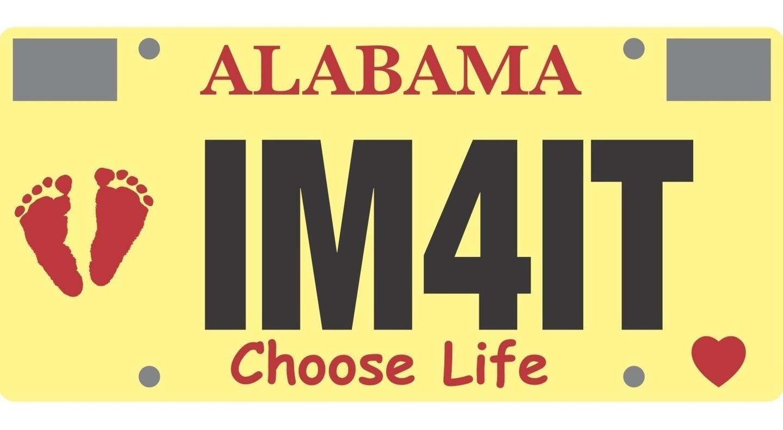 license plate.jpg
