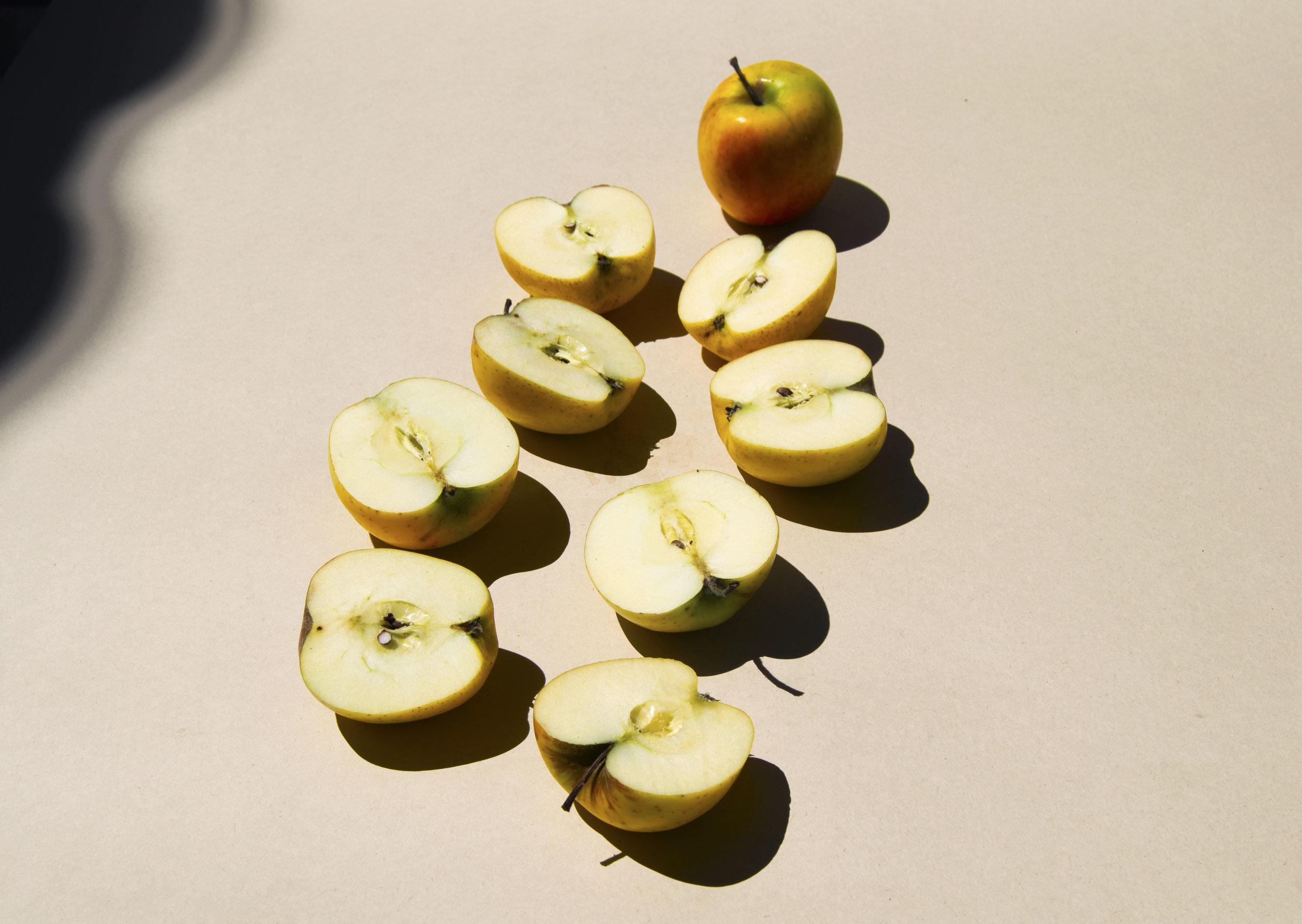 Manzana emilia - Revista Chiú