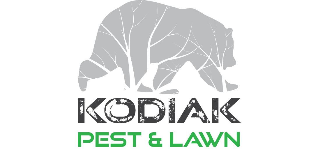 """Why Kodiak? - We strive to operate with the same consistency that Ursa Major points to the North star with. The Kodiak bear is the apex predator of the Rockies, the top of the food chain. We strive to emulate that same prowess in our services. Simply put we strive to be the best. Our experience, our expert knowledge of pests, the chemicals and methods used to control them, and our cutting edge technology make us """"the Great Bear"""" of the Big Horn Basin. That's why we're Kodiak Pest & Lawn."""