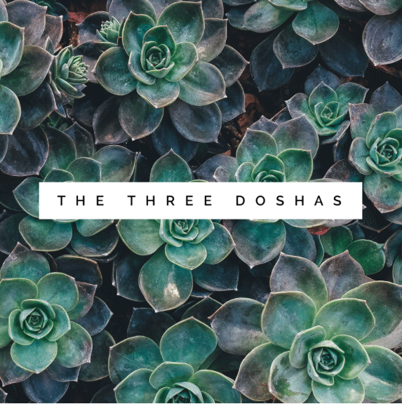 Three Doshas.png