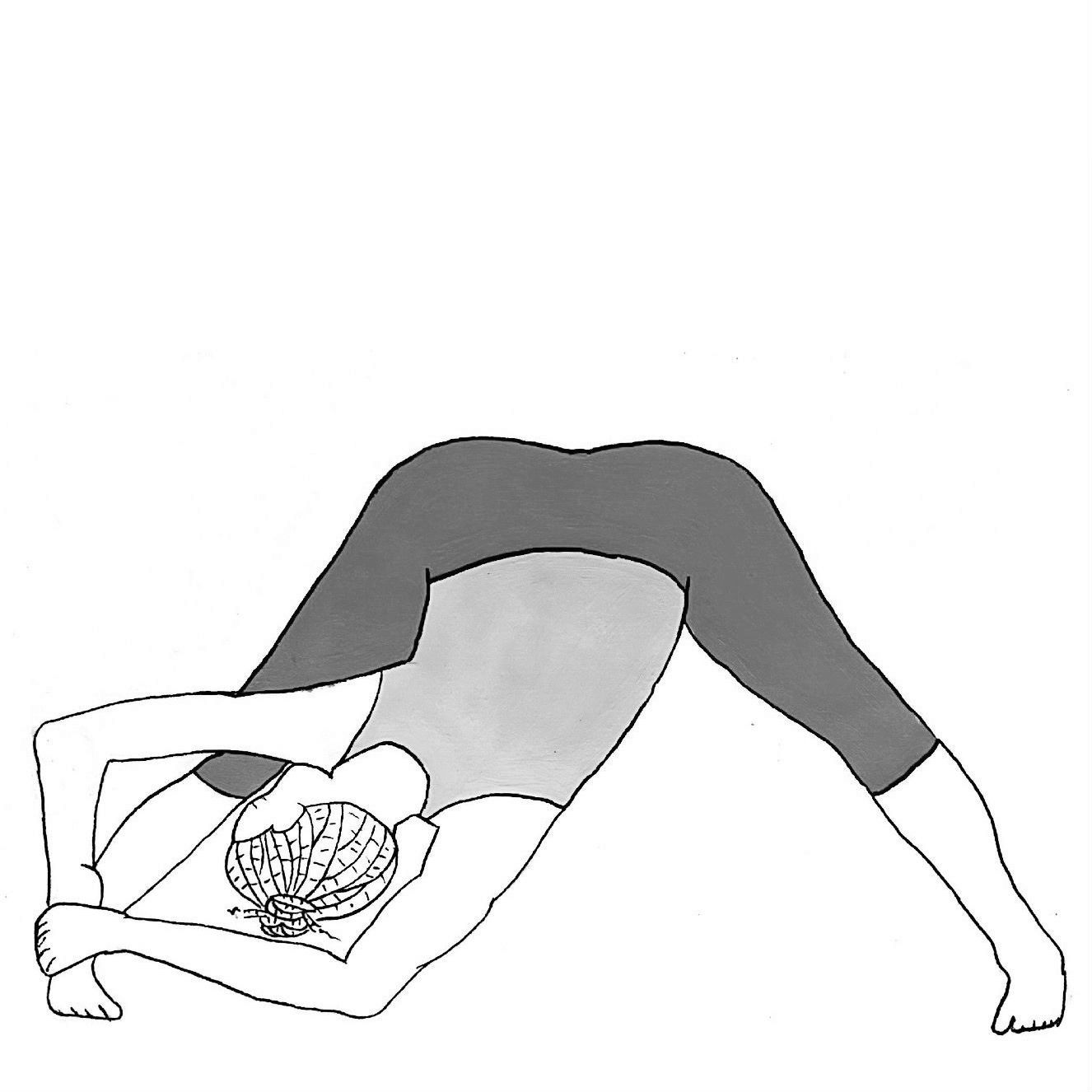 Wide-legged Forward Bend Side Fold - Parsva Prasarita Padottanasana