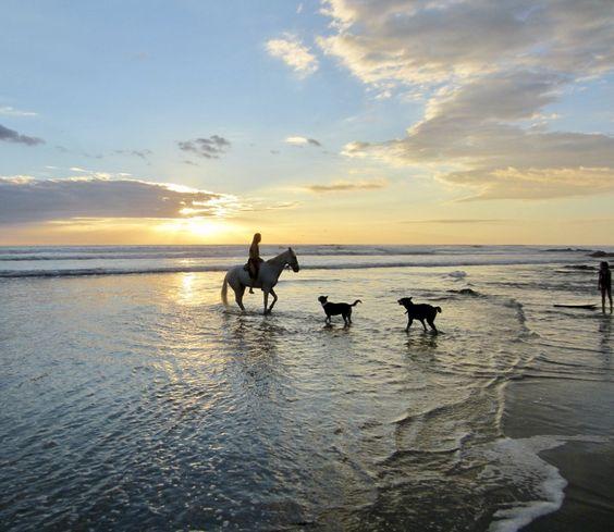 Horse Back Riding on the Beach.jpg