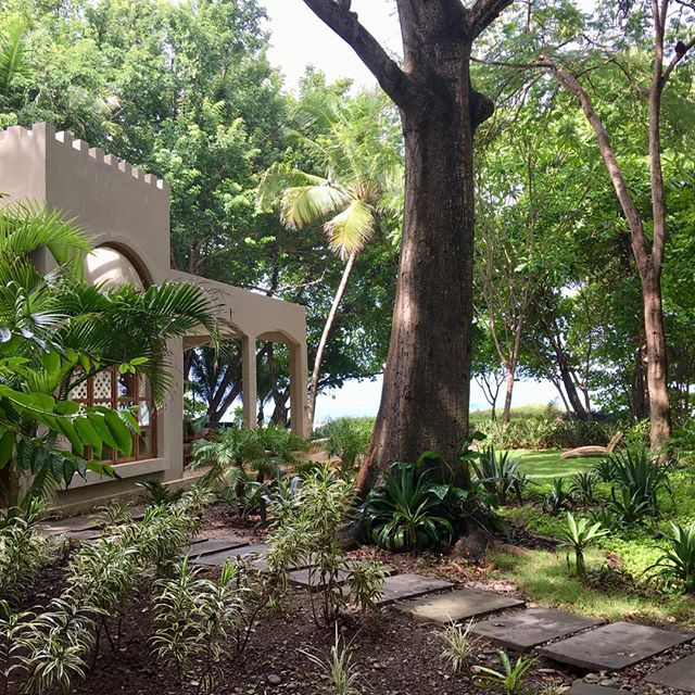 Lush & lovely #greenseason #rain #sun #repeat #luxury #beachfront #vacation #rental #santateresa #costarica #costaricatravel